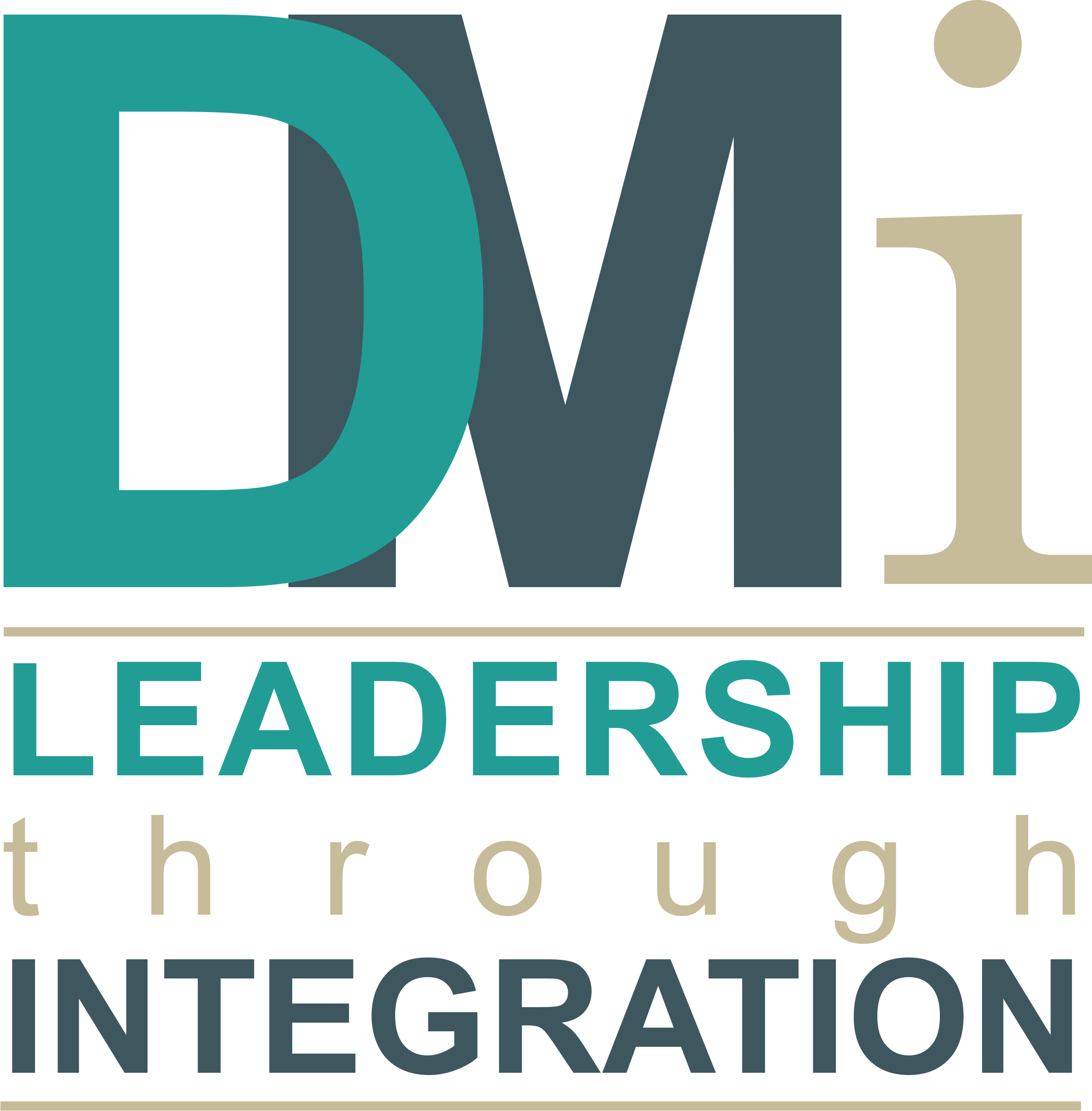 DM Integration - Leadership through Integration