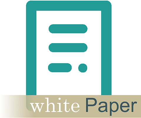 DMi White Paper